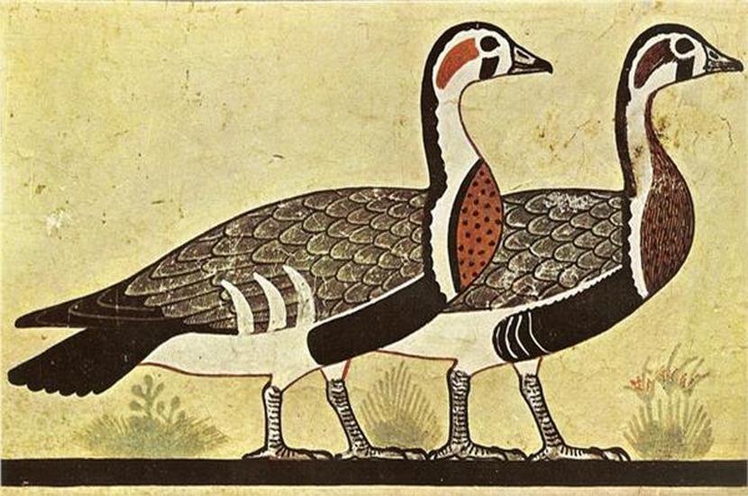 L'histoire du foie gras, déjà au temps des pharaons … il était une «foie»
